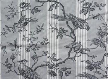 Vie oiseaux gris
